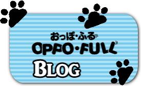 豊中のペットホテルおっぽ・ふるブログ
