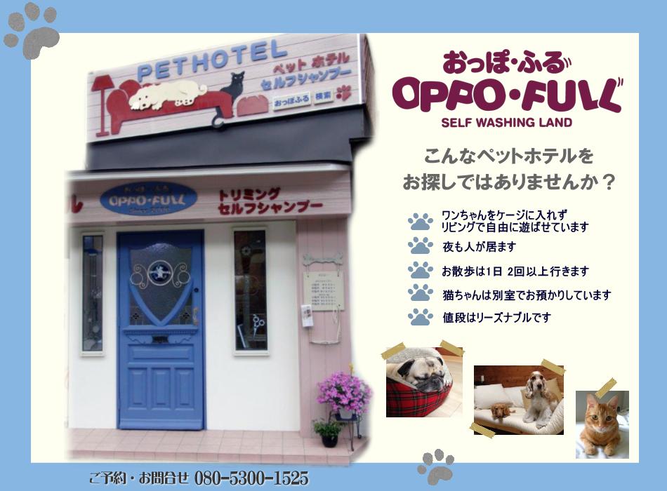 豊中市 ペットホテル おっぽふる